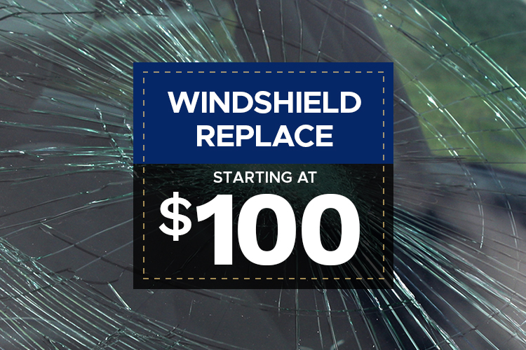 Windshield Replace